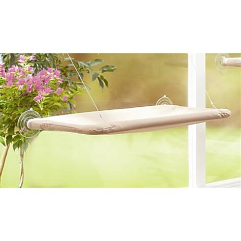 window beds sunny seat window mount cat bed bed bath beyond