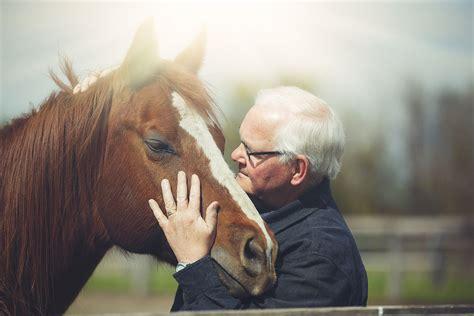 learn   lifespan   horse