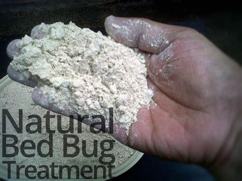 baesta bed bugs treatment ideerna pa pinterest insektsmedel