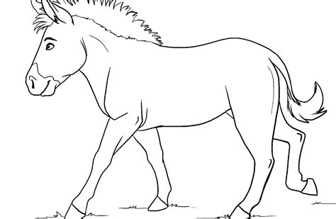 coloring pages online without printing zebra without stripes coloring page bltidm