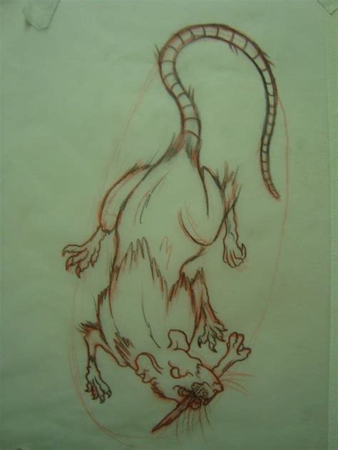 year of the rat tattoo designs best 25 rat ideas on rat ratatouille