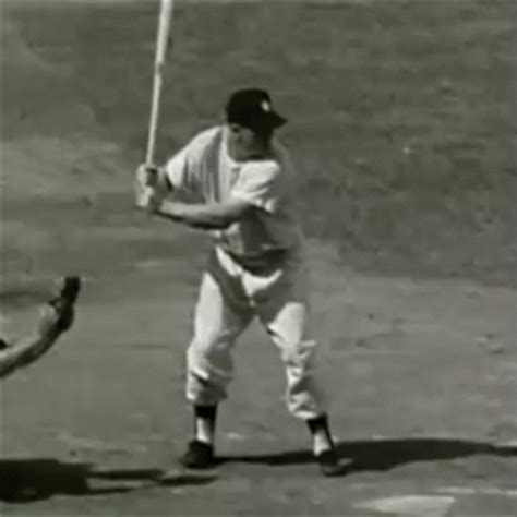 ted williams baseball swing mickey mantle s swing