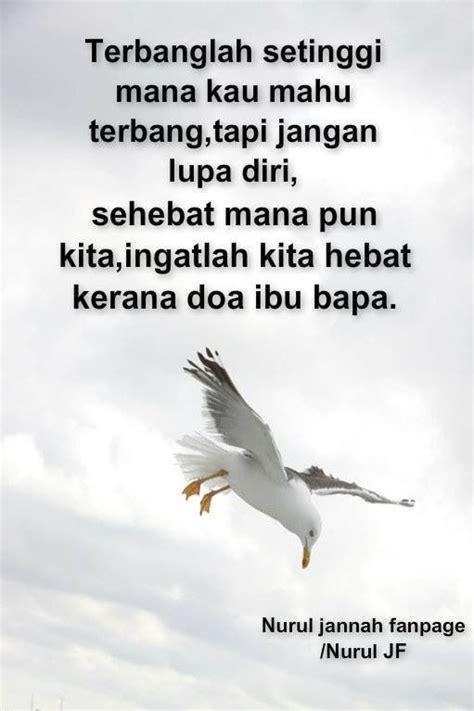 terbanglah setinggi  kau mahu terbang tapi jangan