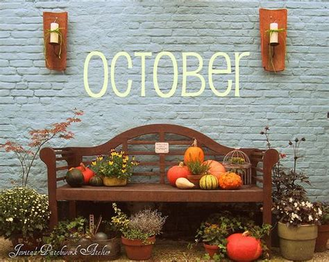 fall bench use pumpkins and various plants to spruce up your outside