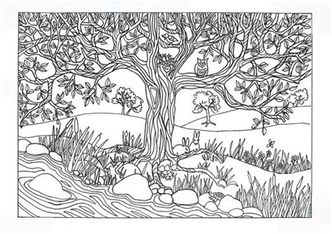 coloring pages for adults nature items similar to tree river nature coloring page