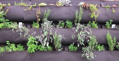 imagenes de jardines caseros pin pictures jardines caseros cuidar de tus plantas es