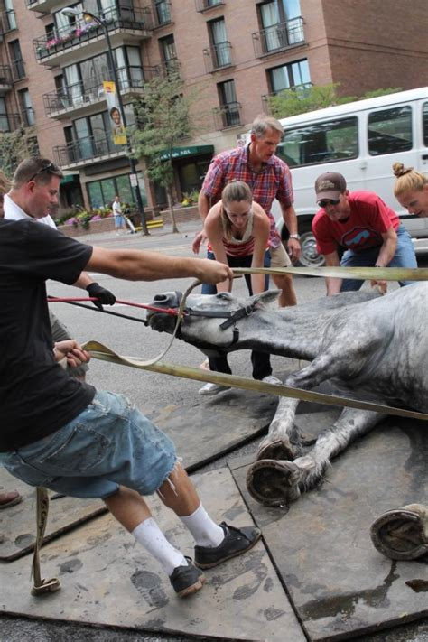 A Sick Collapses by Collapses In Mid Carriage Ride Ny Daily News