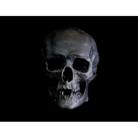 Black Skull black skull free shop