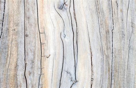 driftwood detail wall mural muralswallpapercouk
