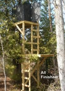 Deer Blind Platform Free Deer Stand Building Plans Blinds Ladder Amp Platform