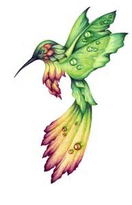 hummingbird drawing 25 best ideas about hummingbird drawing on how to draw birds bird sketch and bird