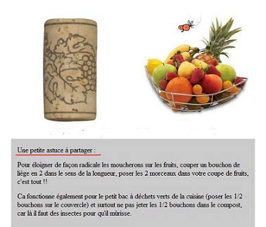 Astuce Contre Les Moucherons by Contre Les Moucherons