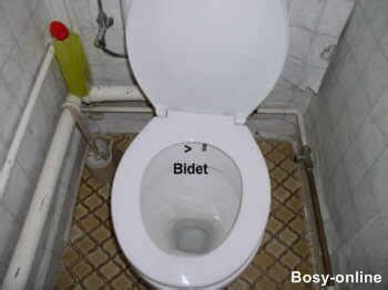wie sitzt auf einem bidet toilette mit intimdusche haustechnikdialog