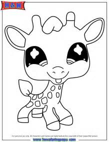 littlest pet shop coloring page littlest pet shop giraffe coloring page h m coloring pages