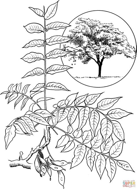 printable heaven images coloring page heaven coloring home