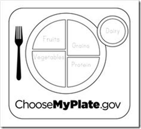 1000 ideas about food groups on pinterest my plate