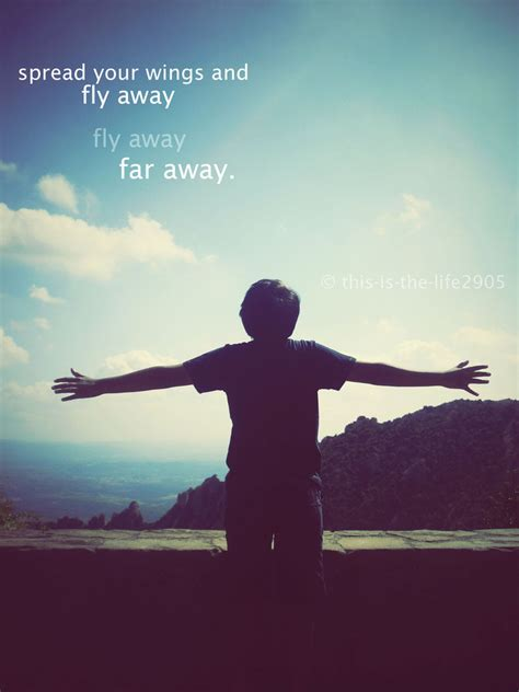 fly away fly away far away by this is the life2905 on deviantart