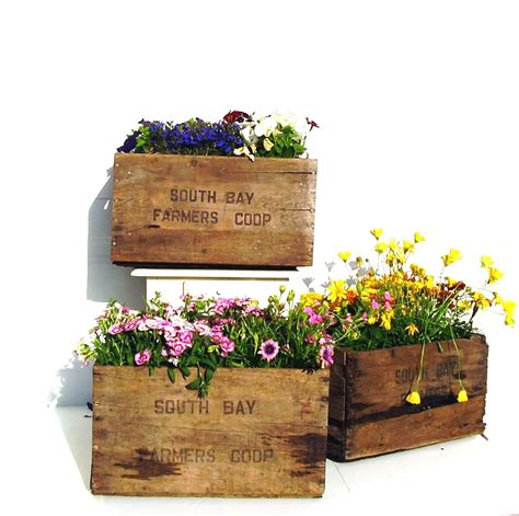 Wooden Crate Planter by Vintage Wooden Crate Rustic Flower Planter Box 1960s
