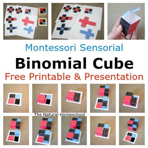 montessori printable resources 32 best images about montessori sensorial extension