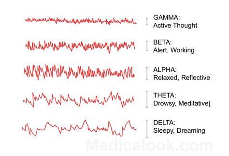 Brain Wave brain waves human anatomy organs