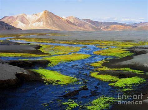 iceland landscape by bernard michel