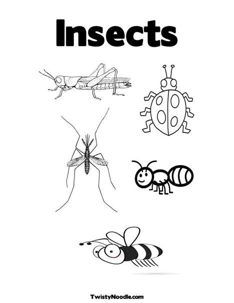 printable pictures insects i is for insects colouring pages