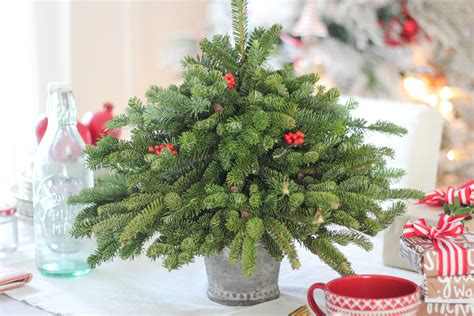 tabletop christmas tree using free clippings craftberry