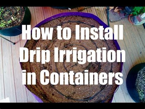 install  drip irrigation system  containers