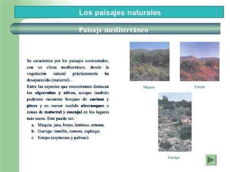 Herbal España paisajes vegetales naturales de espa 241 a