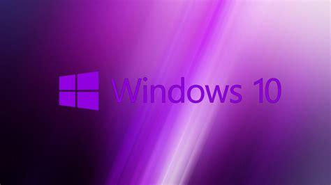 windows  wallpaper purple  original logo hd