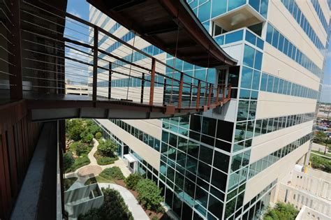 treehouse offers  view   future houstonchroniclecom
