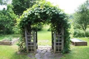 Backyard Grape Trellis Lola S Child Country Home