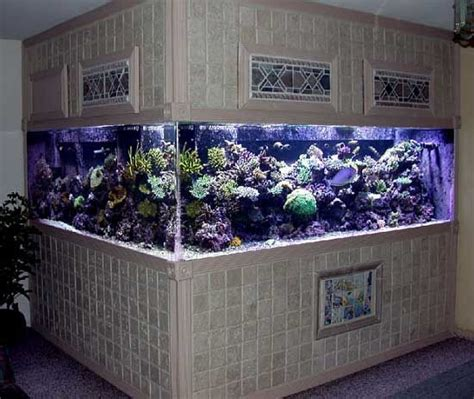 plywood aquarium plans woodworking projects plans