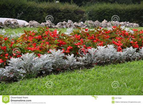 composizione giardino composizione nel giardino fotografie stock libere da