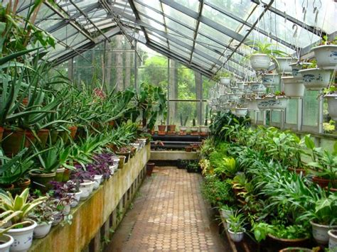 plantes et jardins serres 植物园 jardin botanique ii 192 lire
