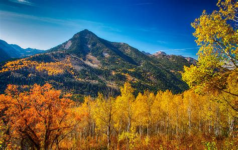 colorado state colors best places to see colorado s fall colors denver