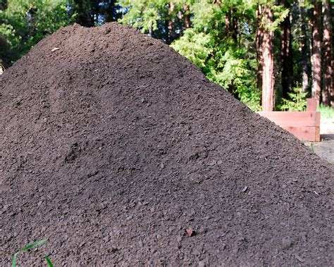 Yard Of Soil Raised Garden Boxes Curbstone Valley