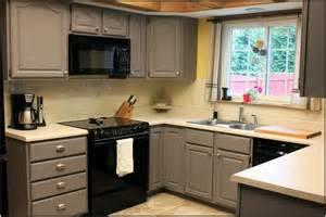 cabinet colors for small kitchen se elatar makeover dekor garage