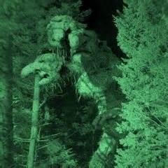 imagenes trolls reales troll hunter goes to magnet