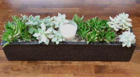 succulent planter diy diy table top succulent planter for the home