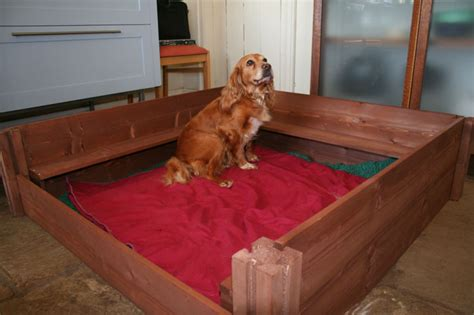 puppy whelping whelping box breeds picture