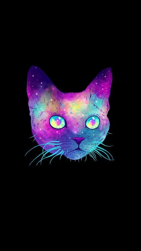 iphone wallpaper cat glasses 25 best ideas about galaxy cat on pinterest cat