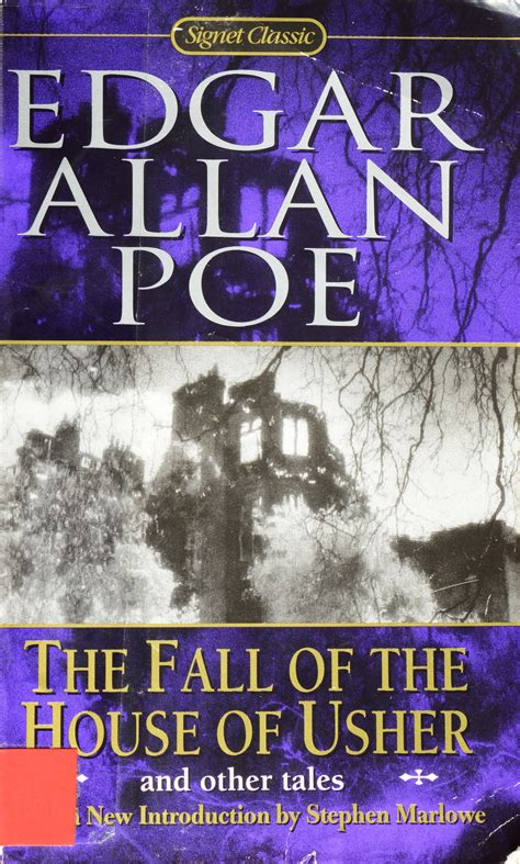 common themes in poe s stories edgar allen poe book review naturally speaking