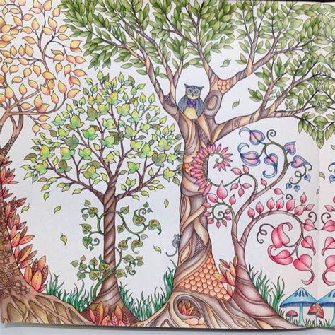 secret garden coloring book dk de 25 bedste id 233 er inden for floresta encantada para