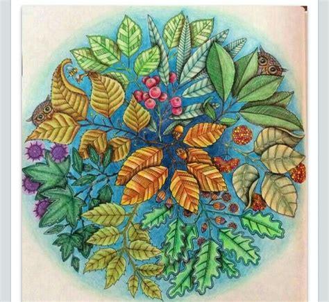 mandala coloring book secret garden mandala owls secret garden mandala de corujas jardim