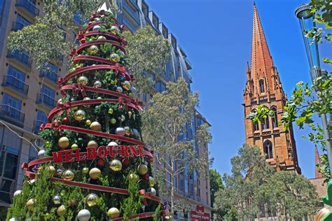 100 christmas tree sale melbourne christmas in
