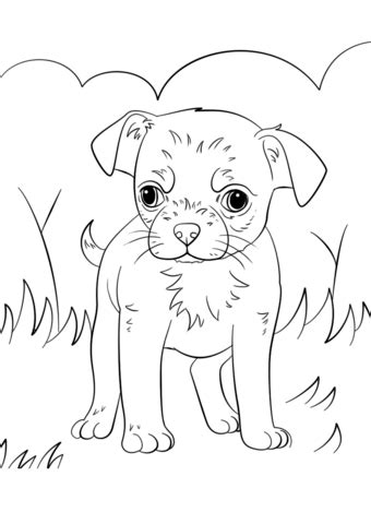teacup puppies coloring pages teacup chihuahua coloring pages coloring pages