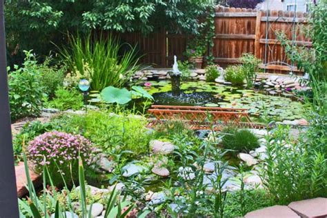 Backyard Ideas Photos Garden Backyard Garden