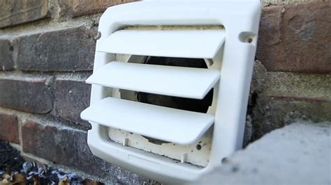Where To Vent My Dryer - how to clean your dryer duct in 5 steps cnet