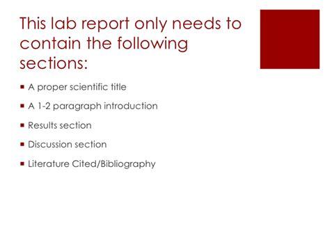 format video instagram apa apa style lab report custom assignments